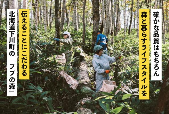 北海道下川町の「フプの森」
